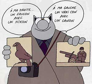 Philippe Geluk - Le chat